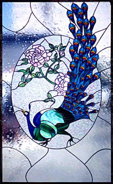 external image peacock.jpg